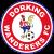 Dorking Wanderers (2018-