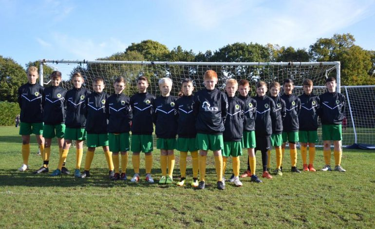 Goals galore for Horsham Youth on 'Super Sunday'